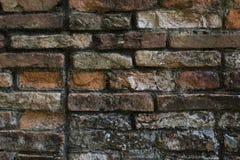 Tegelstenvägg, textur, modell Arkivbilder