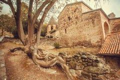 Tegelstenväggar av historiskt Shio-Mgvime den kristna kloster som byggs i det 6th århundradet i Mtskheta, Georgia Arkivfoton