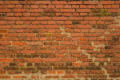 Tegelstenväggen gjorde av röd tegelsten väggen utan murbrukdesign Fotografering för Bildbyråer