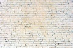 Tegelstenväggen utgöras av osedda rader Ljus bakgrund Textur av murverket Arkivbilder