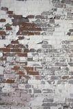 tegelstenväggweatherd Fotografering för Bildbyråer