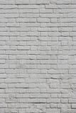 tegelstenväggwhite Fotografering för Bildbyråer