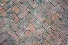 tegelstenwalkway Arkivbilder