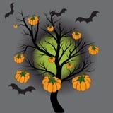 Tegen de achtergrond van de volle maan, een boom zonder bladeren Op een boom van een pompoen royalty-vrije stock afbeelding