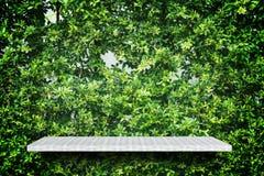 Tegen de tuinmuur van de weversplank voor textuurachtergrond stock foto