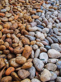 Tegenover elkaar stellende kleuren van de stenen Stock Foto