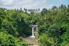 Tegenungan siklawa jest popularnym miejsce przeznaczenia dla turystów odwiedza Bali, Indonezja obraz stock