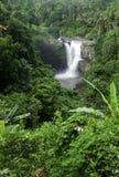 Tegenungan vattenfall i Bali Arkivbild