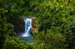 Tegenungan Waterfall Indonesia Bali Stock Images