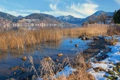 Tegernsee ακτών λιμνών με τη χλόη καλάμων, στο τέλος του χειμώνα Στοκ εικόνες με δικαίωμα ελεύθερης χρήσης