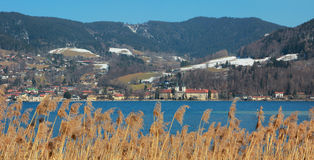 Tegernsee castle at springtime, view to reed grass Stock Photography