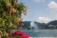 Tegernsee lake view, flowerpot with fuchsia and verveine Stock Image