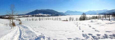 Tegernsee winter panorama Stock Image
