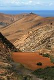Tegu, Fuerteventura Royalty Free Stock Photography