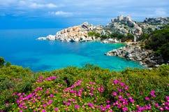 Tegumento del seme del capo - bella costa della Sardegna Fotografia Stock Libera da Diritti