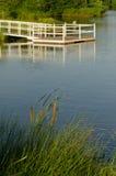 Teich-Ansicht des Docks und der Cattails Lizenzfreies Stockbild