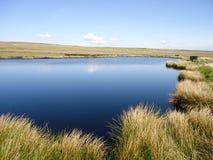 Teich auf Hebden Stockbilder