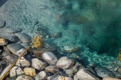 Teich der heißen Quelle. Stockbilder