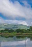 Teich in der Natur Lizenzfreies Stockfoto
