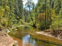Teich in der Westgabel der Eichen-Nebenfluss-Schlucht bei Sedona lizenzfreie stockfotos