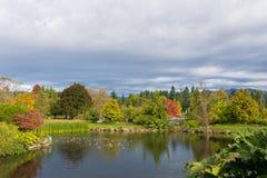 Teich in einem Garten lizenzfreie stockbilder