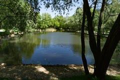 Teich in einem Park lizenzfreies stockfoto