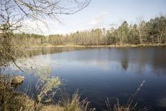 Teich an einem sonnigen Wintertag Stockfotografie