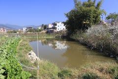 Teich für das Pflanzen des Gemüses Stockfoto