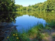 Teich hinter Wäldern und Anlagen Stockbild