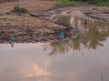 Teich im Bauernhof Stockfotografie