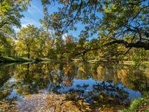Teich im Herbst Stockbild