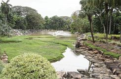 Teich im Park von Nong Nooch Lizenzfreie Stockfotografie