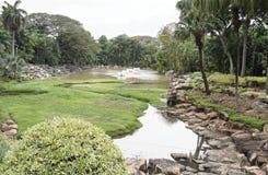 Teich im Park von Nong Nooch Lizenzfreie Stockbilder