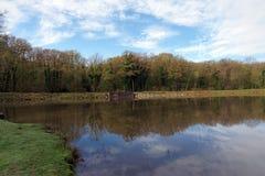 Teich im Rambouillet-Wald Lizenzfreie Stockfotos