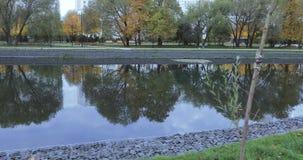 Teich im Stadtpark stock video
