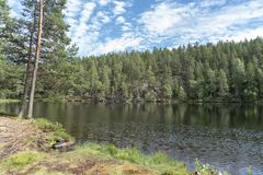 Teich im Wald in Schweden lizenzfreies stockfoto