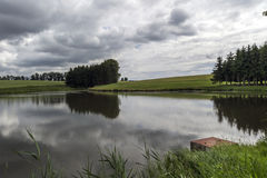 Teich im Wald vor dem Sturm Stockfoto
