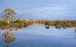 Teich in Kambodscha Lizenzfreie Stockfotos