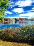 Teich in Maine Lizenzfreies Stockbild