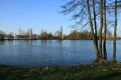 Teich mit Bäumen und blauem Himmel stockfoto