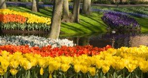 Teich mit bunten springflowers lizenzfreies stockfoto