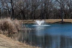 Teich mit einem Brunnen Lizenzfreie Stockfotos