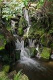 Teich mit einem kleinen Wasserfall Lizenzfreie Stockfotos
