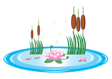 Teich mit Lilien- und Wasserschilfen Stockbild