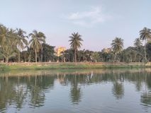 Teich mit Park Stockbild