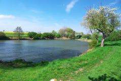 Teich nahe Radovesnice Stockbild