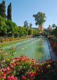 Teich umgeben durch Blumen Stockbilder