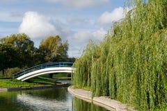 Teich und Brücke Stockbild