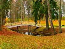 Teich und Brücke Lizenzfreie Stockfotos