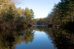 Teich und Wald Lizenzfreie Stockfotos